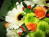 Hand Bouquet