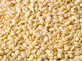 Dried Sesame Seed Background