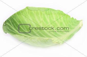 single cabbage leaf #2