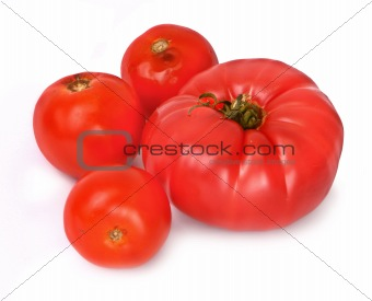 group of tomatos