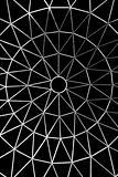 star shaped metallic network