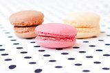 macaroon - sweet cookies