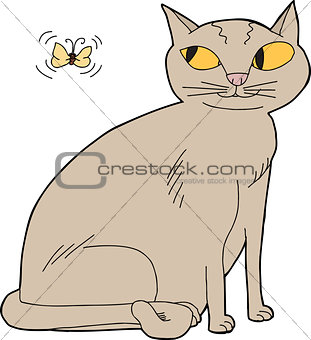 Cat and Moth