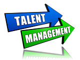 talent management in arrows