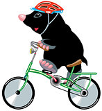 mole riding bike