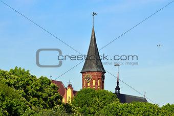 Koenigsberg  Cathedral on the Kneiphof island. Kaliningrad, Russia
