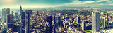Panoramic view of Frankfurt am Main city. Germany