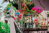 Flowers on balcony