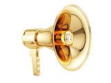 Golden megaphone
