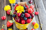 Fresh summer berries in a bucket