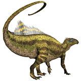 Tenontosaurus Profile