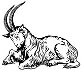 goat zodiac black white