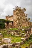 Byblos Castle Ruins Overgrown
