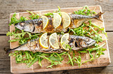 Grilled mackerel with fresh arugula