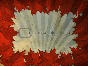 Grunge leaves frame