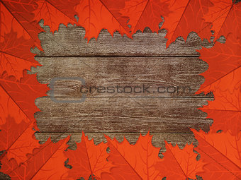 Leaves over wooden background