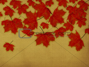 Paper with red leaves