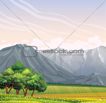 Green field and flowering trees. Landscape.