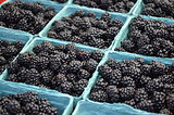 Farm fresh blackberries