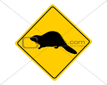 Beaver warning sign