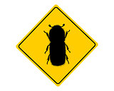 Bark beetle warning sign