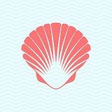 Sea shell