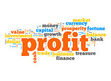 Profit word cloud
