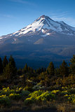 Mount Shasta Vertical Cascade Range West Coast