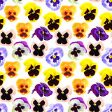 Seamless pattern of pansyes flowers