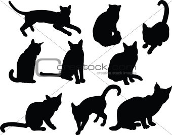 cats collection - vector