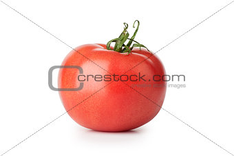 one fresh red tomato