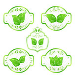 Set of green ecological labels with leaves isolated on white bac