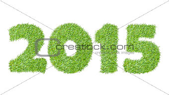 New year 2015 from the green grass, isolated on white