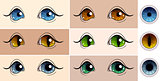Vector set of colored pupils