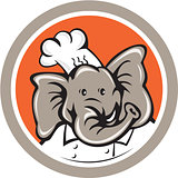 Elephant Chef Head Cartoon