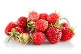 Berries fresh wild strawberries with green leaf