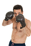 adult smiling man boxing sport gloves boxer isolated
