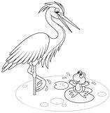 Heron and frog