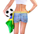 Brazilian football team supporter