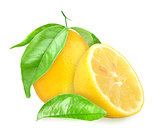 Yellow lemons with green leaf