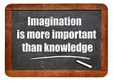 imagination and knowledge quote