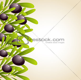 Green olive branches and black olives