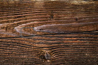Close-up detail of wood texture background