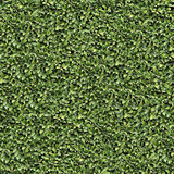 Laurel Bush Surface. Seamless Texture.