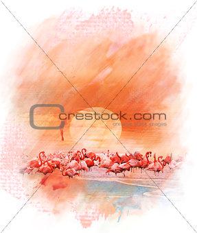 Watercolor Image Of  Flamingos