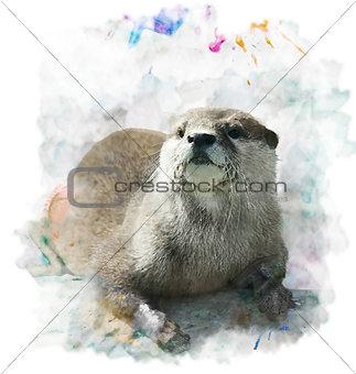Watercolor Otter Portrait