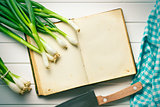 old recipe book with spring onion