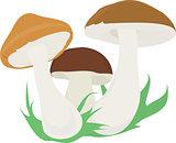 3 mushroom.
