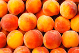 Peach Fruit Background