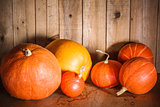 Pumpkins on grunge wooden backdrop background